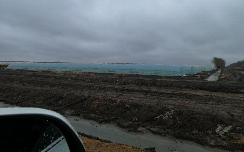 黑龙江遭遇寒潮降温 东极佳木斯育秧棚压力不小图片