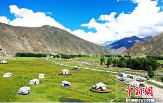 """""""智志双扶"""" 多元发展带动西藏农牧民增收"""