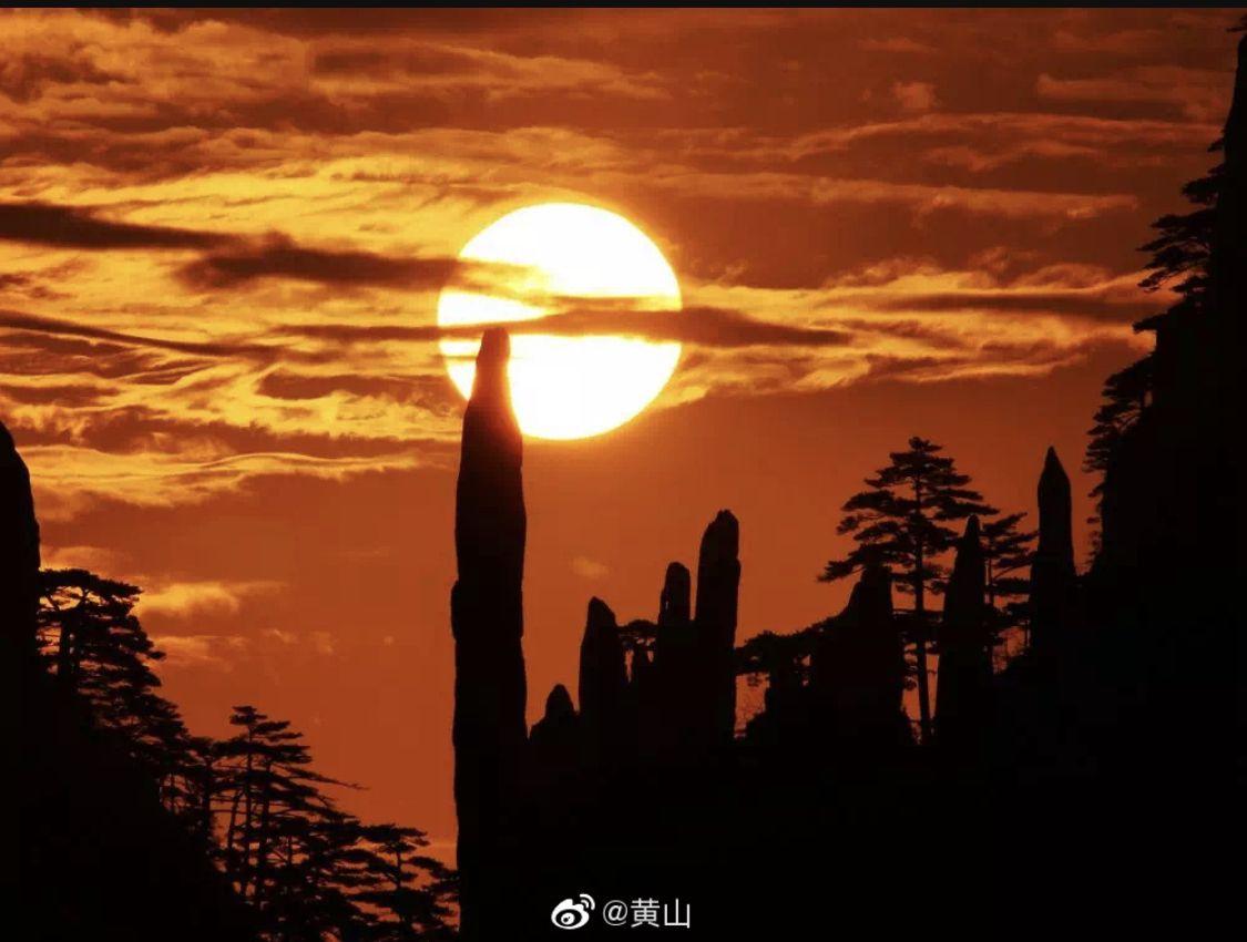 杏悦注册年净利降四成游客量增幅止跌回杏悦注册图片