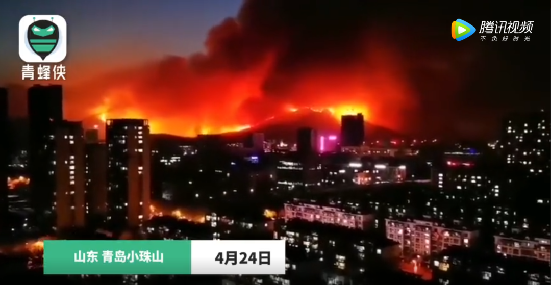 青岛山火复燃 还在扑救!图片