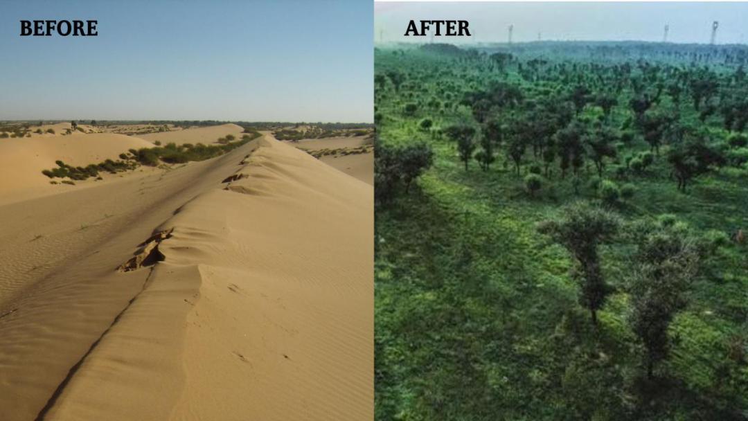 毛乌素沙漠景象今昔对比图 图源:百度贴吧