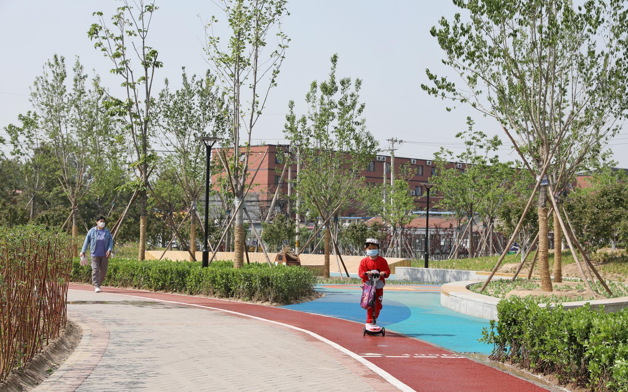 年内建成开放8处公园将实施绿化233杏悦,杏悦图片