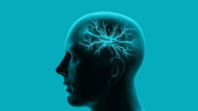 记性、反应变差,是不是脑血管疾病造成?