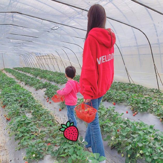 baby带儿子小海绵采摘草莓 母子俩动作神同步