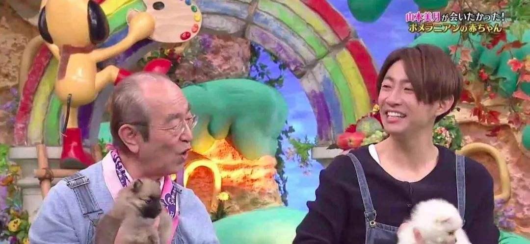 志村健遗体已火化,相叶雅纪将接任主持《志村动物园》