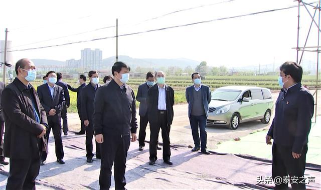 崔洪刚调研包保的特种建筑用钢产业集群项目 坚定不移支持骨干企业做大做强