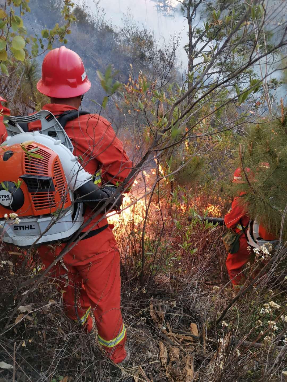 西昌山火扑救者:一根木头复燃山火,全队差点被包围图片