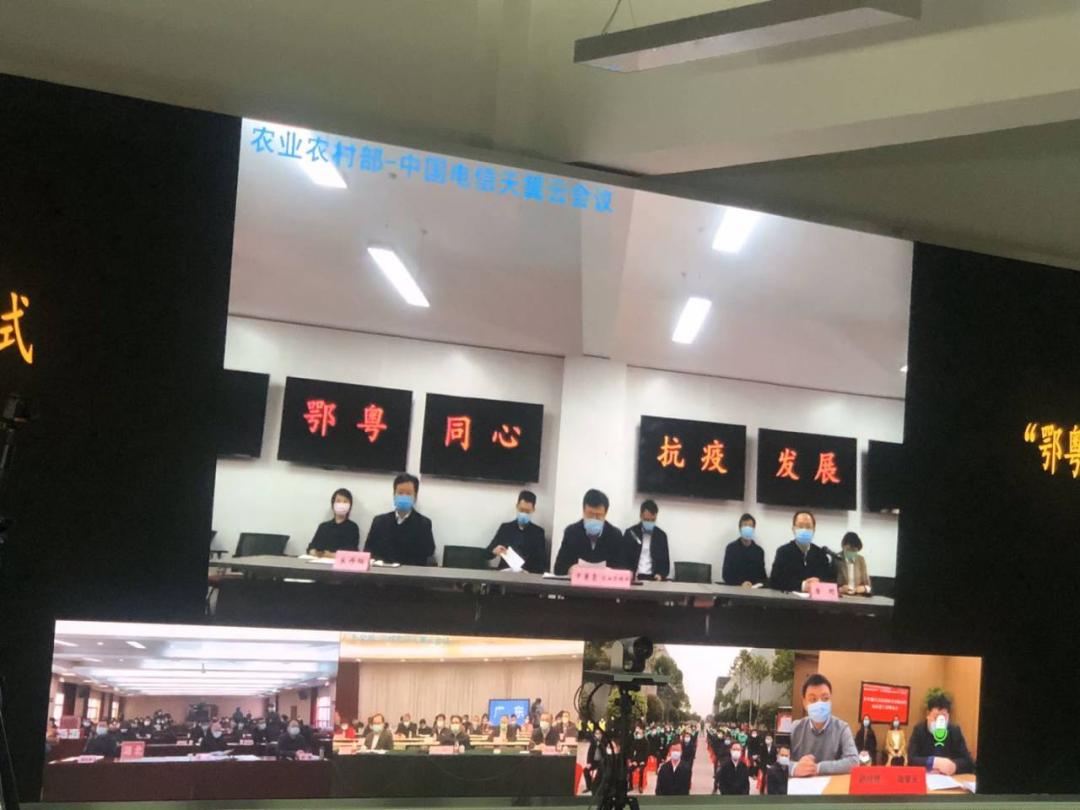 中国电信硬核科技、暖心服务为农