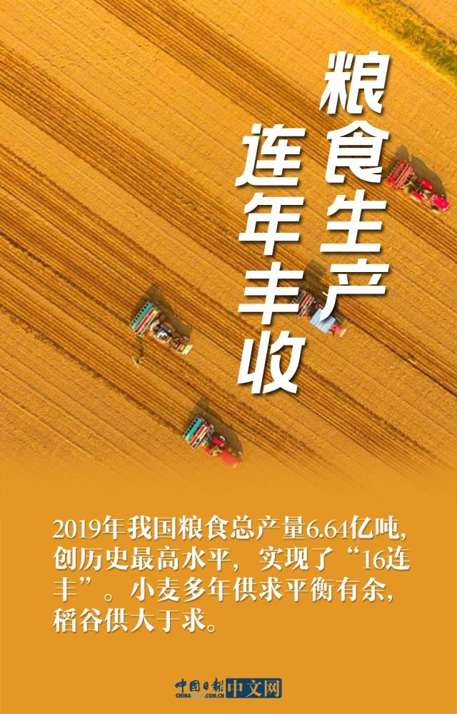 """【图说中国经济】还在传要""""囤粮""""?八张图告诉你什么叫粮食大国!"""