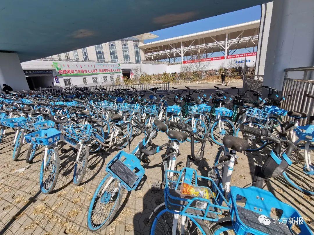 呼和浩特:约谈共享单车企业 规范乱停乱放