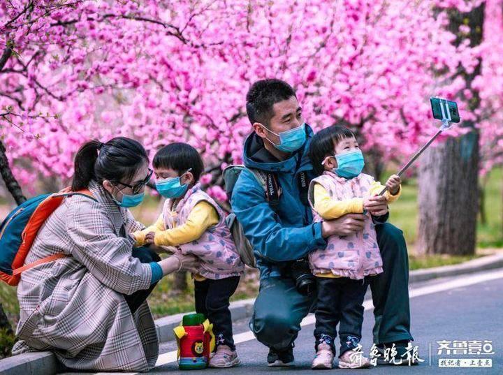 清明小长假济南野生动物世界人气看涨,游客有序游园不负春光