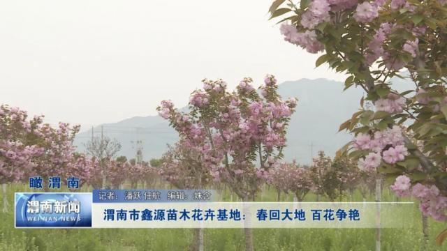 渭南市鑫源苗木花卉基地:春回大地 百花争艳