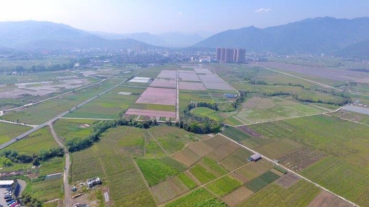 温州鹿城:农业机械化 规模化水平再上新台阶