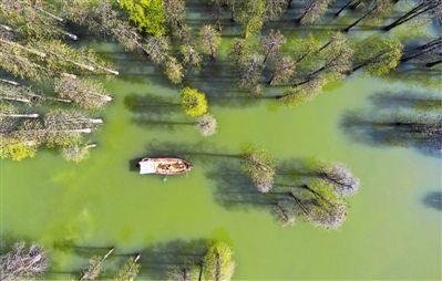浙江省杭州市临安区积极治理水环境 开展巡护行动