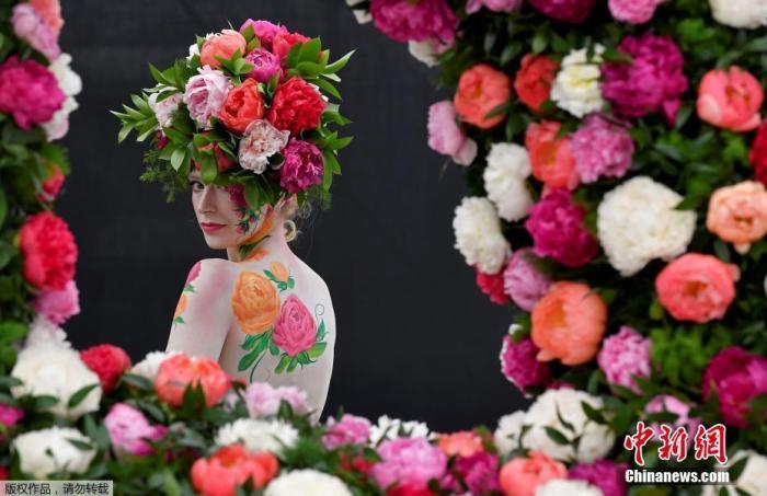 资料图:2019年5月20日,英国伦敦切尔西花展举行媒体开放日活动,邀请特邀嘉宾和媒体参观花展。