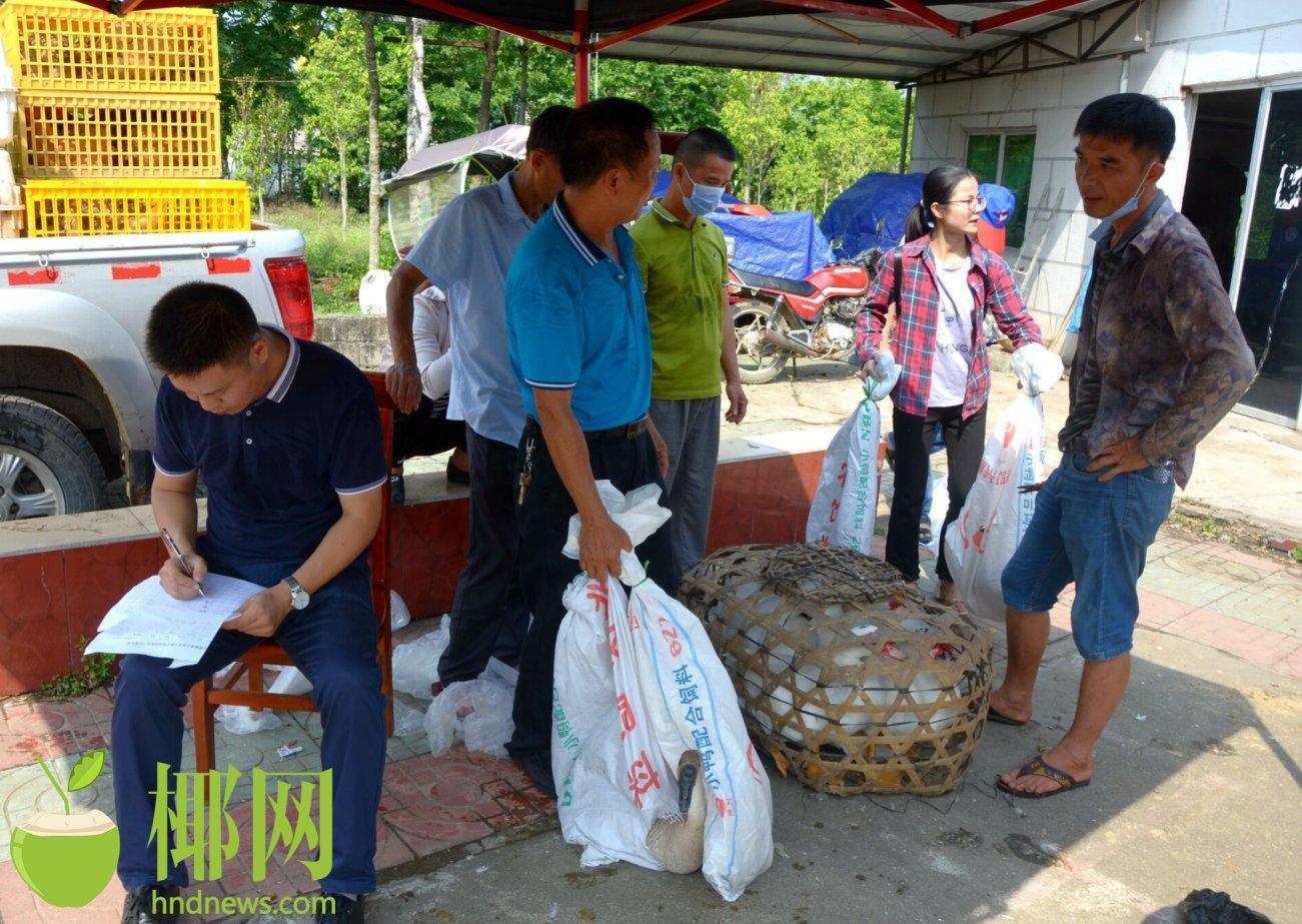 澄迈县检察院扶贫购买农产品2万余元