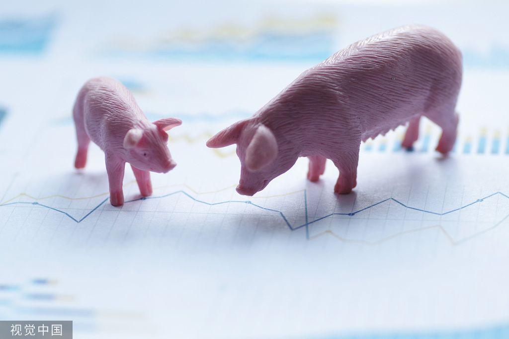 [摩天测速]天邦股摩天测速份谈猪价五六月可能图片