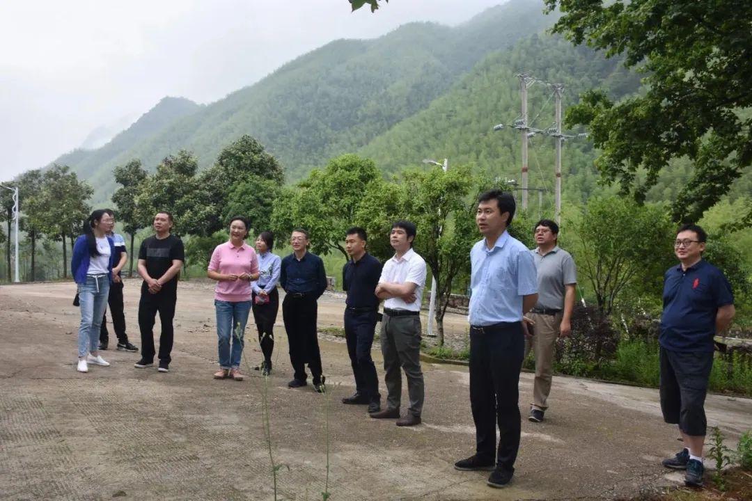 中组部、团中央博士服务团助力铅山茶产业发展
