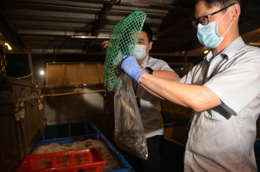 广州凌晨突击检查黄沙水产品市场,抽检花甲、罗氏虾等24个批次