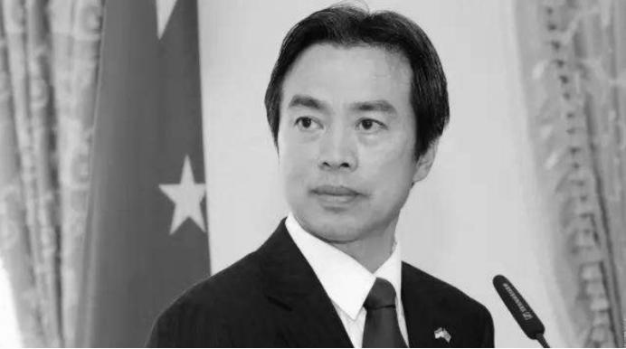 摩鑫平台:杜伟大使走得非常摩鑫平台突然向外交图片