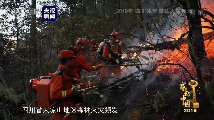 扑火勇士当选摩天登录感动中国,摩天登录图片