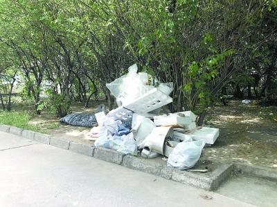 """多个小区及菜市场出现""""难回收的可回收垃圾"""" 泡沫塑料回收难问题凸显"""