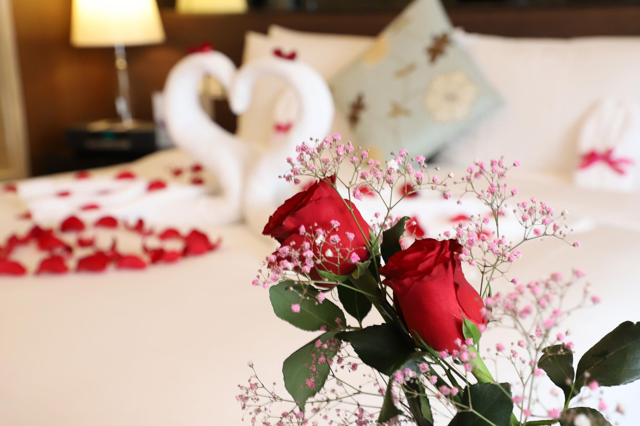 的爱情表白日酒店怎摩鑫开户么玩出新花样,摩鑫开户图片