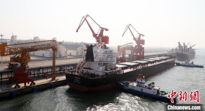1年接卸进口大豆220多万吨。中储粮 供图