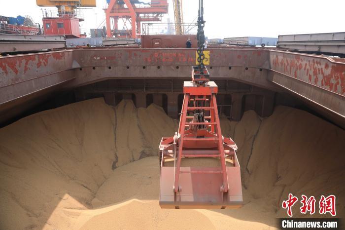 2019年6月5日,首艘进口大豆船靠泊。图为卸粮食作业场景。 沈殿成 摄