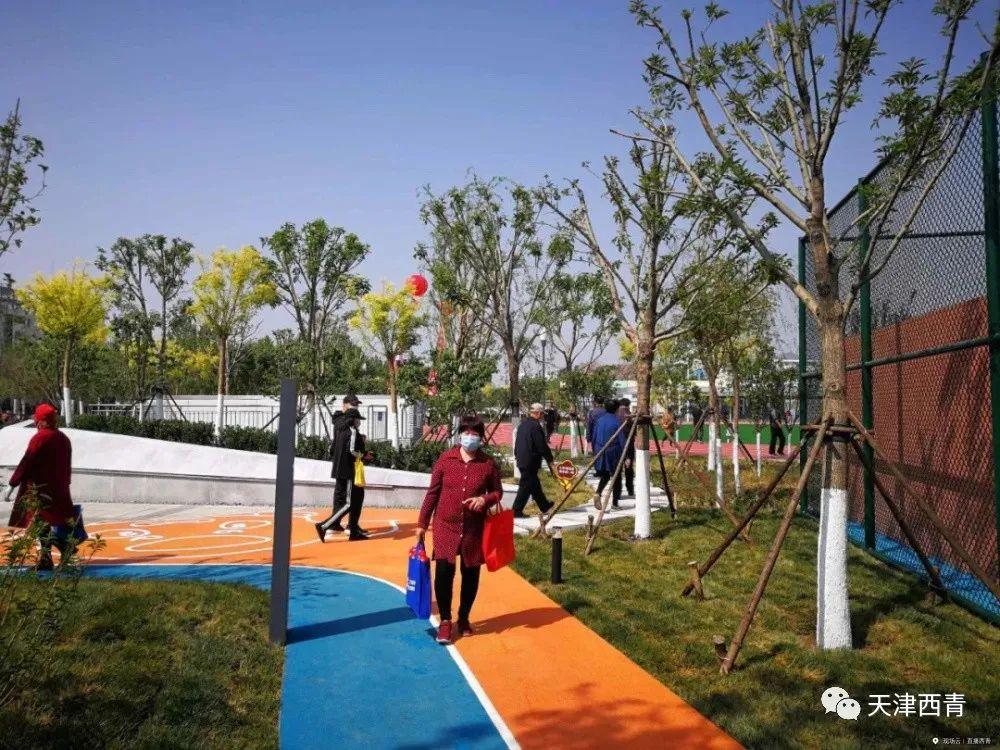 【新时代文明实践在西青•民心工程】民心工程惠民生——西青体育公园开园 群众休闲健身好去处