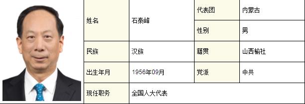 摩天注册:应勇龚正王忠林所在代表团变了摩天注册图片