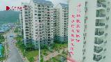 广西易地扶贫安置点:百色市深圳小镇