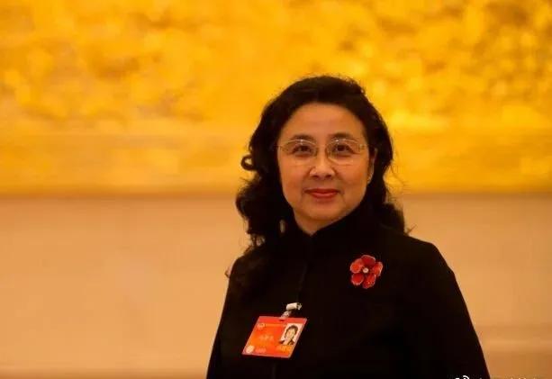 天富开户:来自全国政协委员冯丹天富开户龙图片