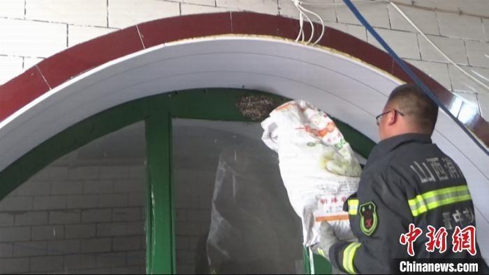 消防员利用自制的捕蛇袋子将燕子窝和蛇全部装进袋子。 周洋 摄