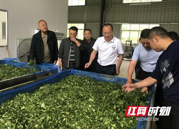 张家界副市长李培其赴斗篷山村开展精准扶贫督导工作