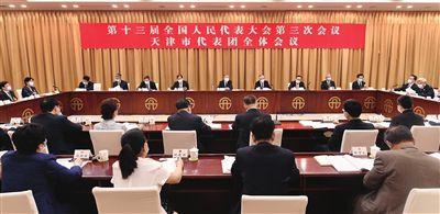 天津代表团举行全体会议审议政府工作报告 李鸿忠张国清段春华齐玉等发言