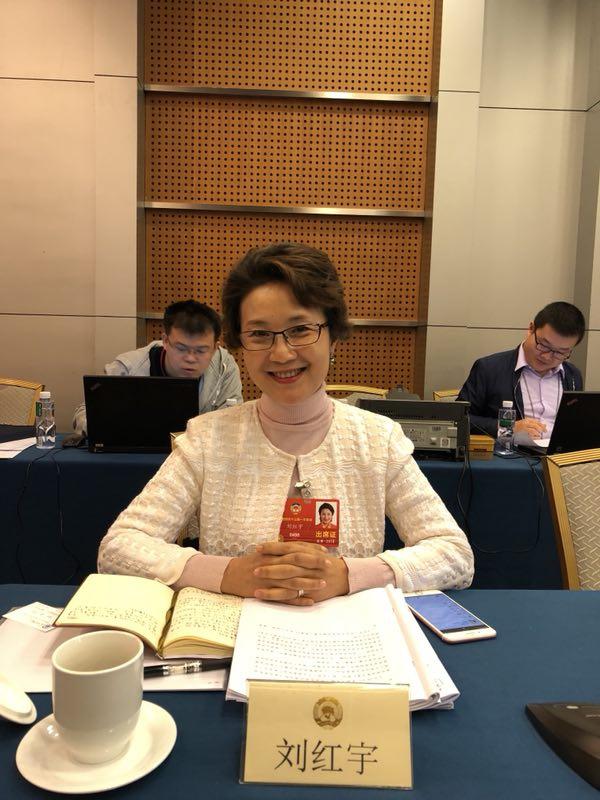 【摩登4平台】红宇委员建议摩登4平台图片