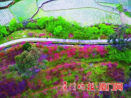 厦门将新增一条森林步道 南起同安北至福州闽清县
