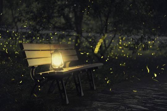 小封写诗丨诗两首《萤火虫》、《诗人的使命》 作者 小封