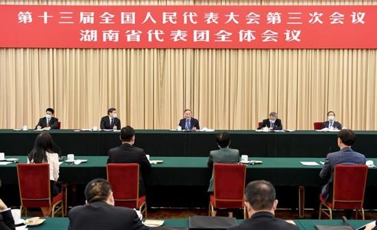 王岐山在参加湖南代表团审议时强调:保持定力恒心 确保伟大复兴航船行稳致远