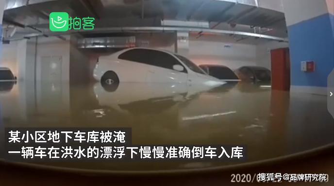 车库被淹洪水完美倒车入库 网友:洪水的车技都比你好