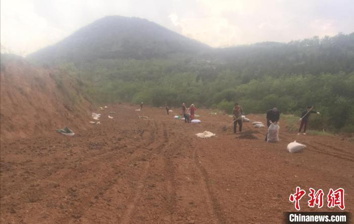 5月,韩慧勇与村民对果园里剩余的荒地进行开垦,种植有机农作物。 韩慧勇供图