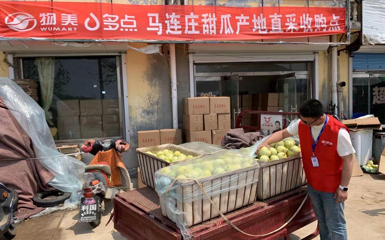天富:收到北京商超二天富茬瓜采购订单心里图片