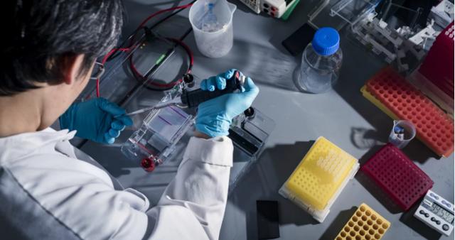 """科学家发现癌症""""拼图""""中的两块蛋白质""""碎片"""""""