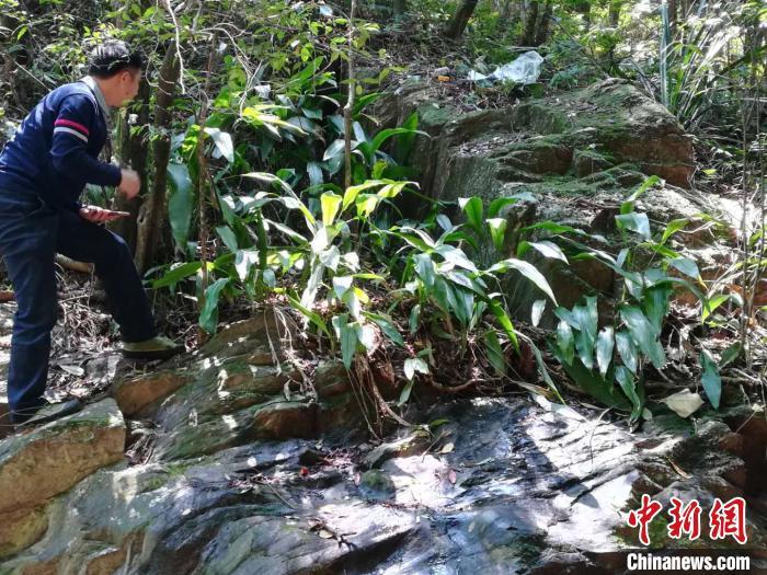 http://prebentor.com/guangzhoulvyou/372704.html