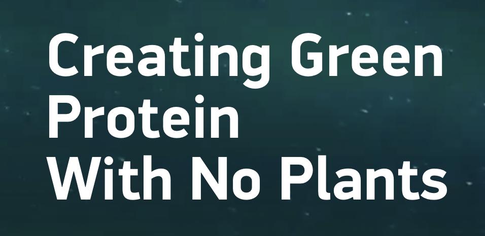 「Mycorena」获 120 万欧元融资,打造基于真菌的蛋白质