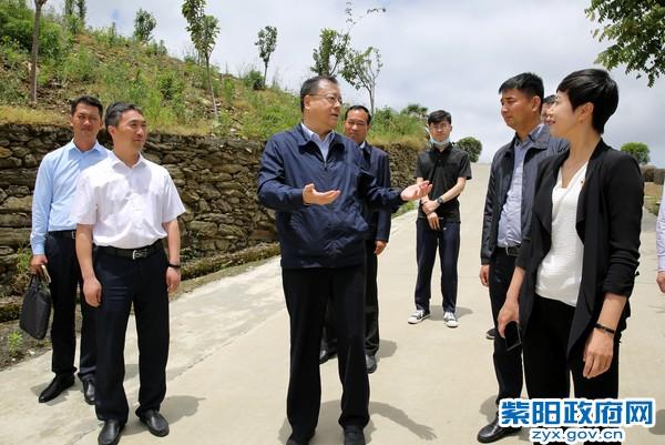 卢建军在紫阳调研时强调   积极实施品牌战略发展县域经济 为打赢脱贫攻坚战奠定坚实基础