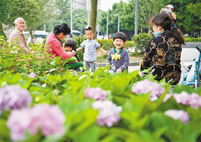 北碚区完成空地荒地绿化项目50个 建成14个微型绿地