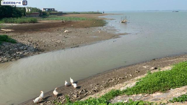 江苏发布洪泽湖干旱蓝色预警 水利部门发布应急措施