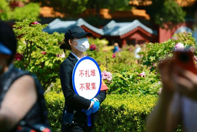 【摩天注册】两日北京167万人摩天注册逛公园图片